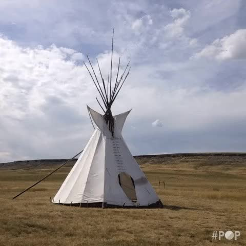 Watch and share Tipi GIFs on Gfycat