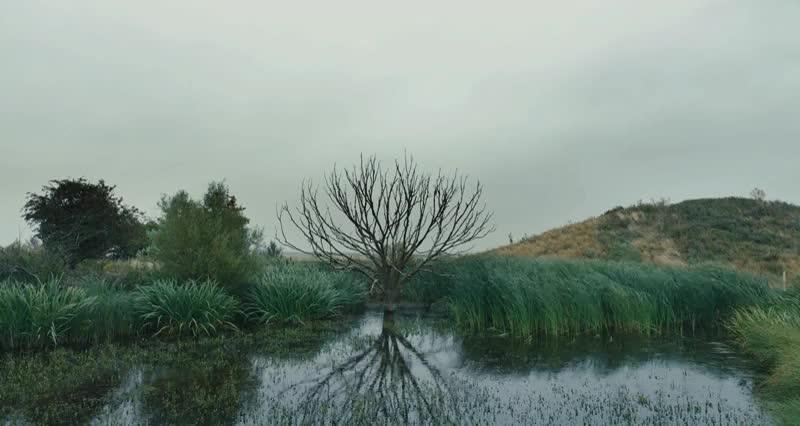 The Danish Girl (2015) Cinemagraphs GIFs