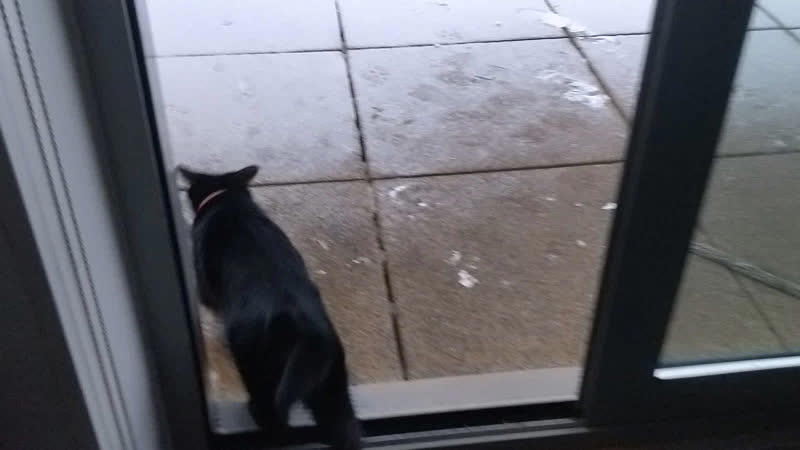 She doesn't believe it's water GIFs