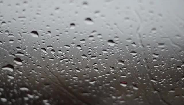 Watch and share Rainy Day Background Video - No Sound GIFs on Gfycat