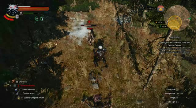 The Witcher 3 2019 08 14 - 09 27 07 02 DVR GIF | Find, Make