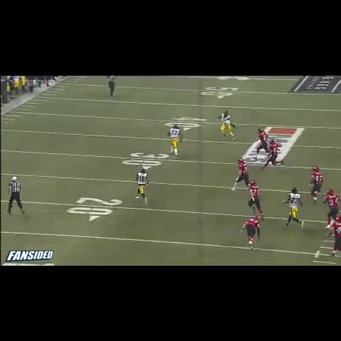 Watch and share CFL Punter Gets Destroyed GIFs on Gfycat