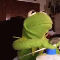 Watch kermit GIF on Gfycat. Discover more related GIFs on Gfycat