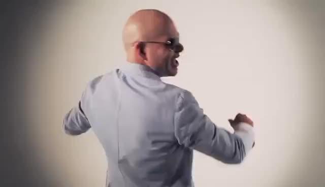 Watch and share Pitbull GIFs on Gfycat