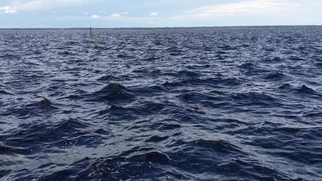Watch and share Lake Monroe GIFs by itsjmao on Gfycat