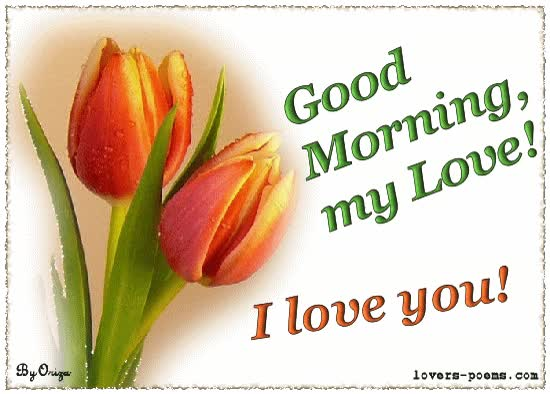 Watch and share Good Morning My Love Love You animated stickers on Gfycat