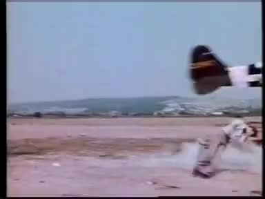 Watch Plane Hits Reporter GIF on Gfycat. Discover more All Tags, Dent, Plane, aviation, fly, head, hits, land, moth, reporter, sky, tiger, war, wing GIFs on Gfycat