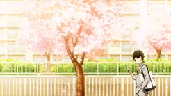 Watch and share Your Lie In April GIFs and Arima Kousei GIFs on Gfycat