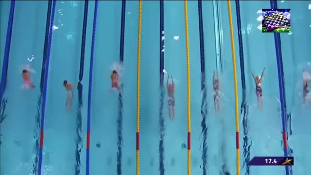 Watch 200m BR stroke cycle topview first 50m GIF on Gfycat. Discover more 2018 GIFs on Gfycat
