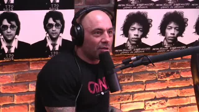 Watch and share Joe Rogan GIFs on Gfycat