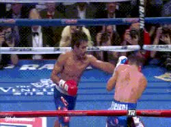 Watch Pacquiao Power Jab Algieri GIF by @mightyfighter on Gfycat. Discover more related GIFs on Gfycat