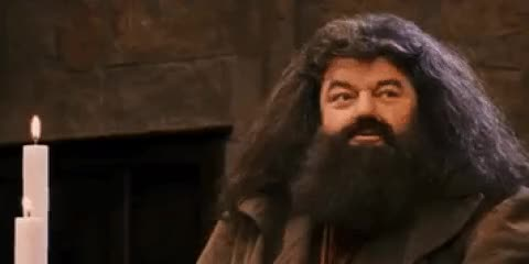 Watch and share Landscape Hagrid Harry Potter Yes GIFs on Gfycat