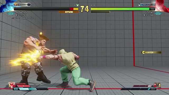 Watch and share StreetFighterV 2020-05-01 16-01-02 GIFs by mineeman on Gfycat