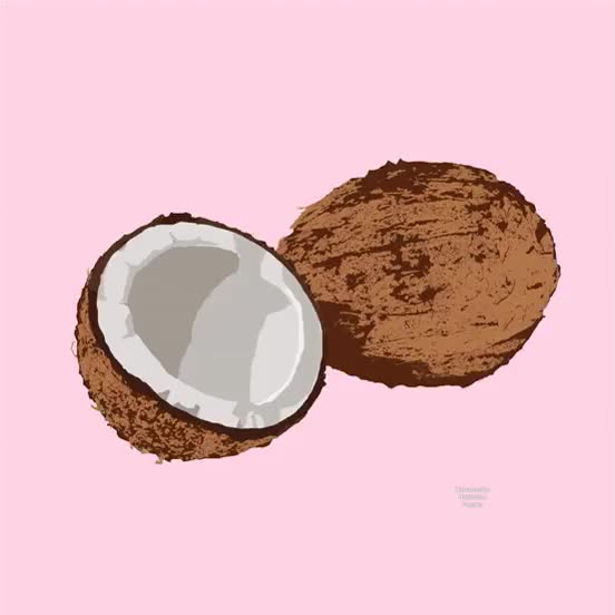 Watch and share Coconut GIFs on Gfycat