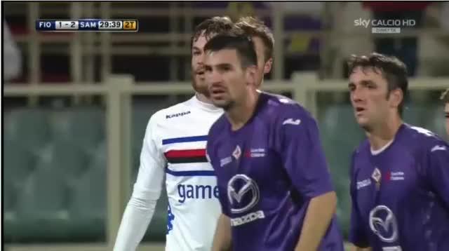 Watch and share Sampdoria2 GIFs by reids1 on Gfycat