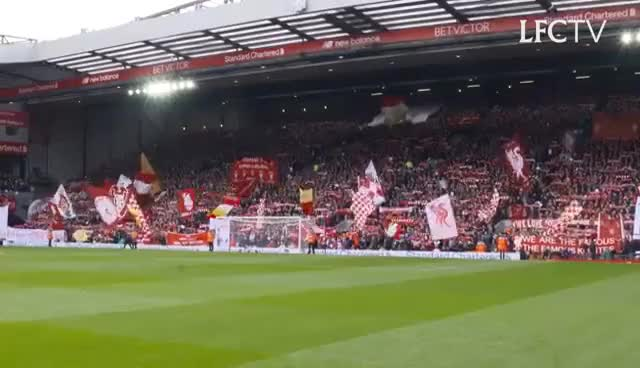 Watch and share Liverpool GIFs on Gfycat