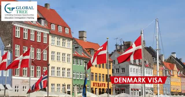 Watch and share Denmark Visa GIFs on Gfycat