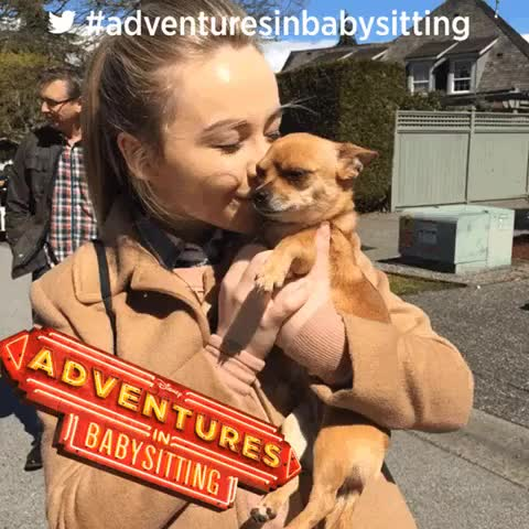 Watch Sabrina Carpenter - 1 MORE DAY AND A CUTE PUPPY THATS NOT IN THE MOVIE  #adventuresinbabysitting GIF on Gfycat. Discover more SabrinaCarpenter, sabrinacarpenter GIFs on Gfycat