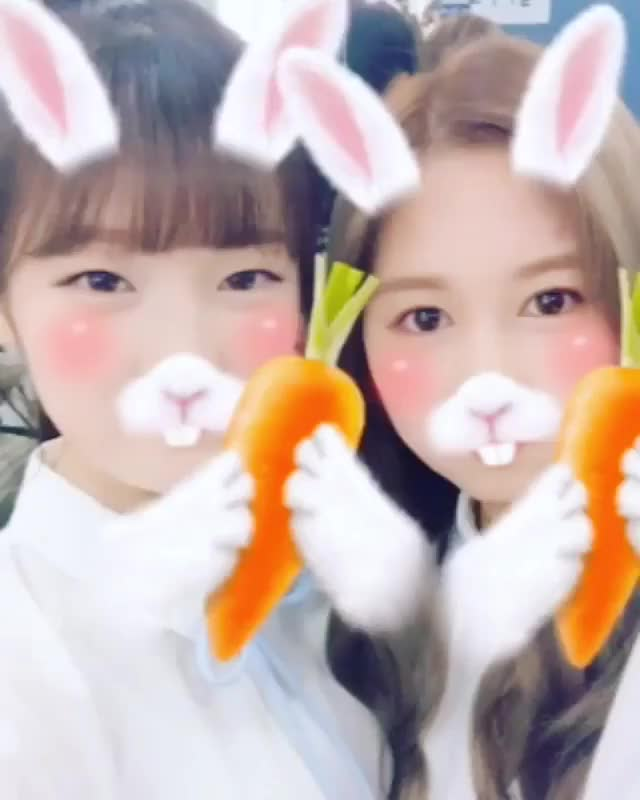 Watch Arin And Dayoung GIF on Gfycat. Discover more kpics GIFs on Gfycat