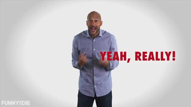 Watch this yes GIF by Funny Or Die (@funnyordie) on Gfycat. Discover more Funny or Die, Keegan Michael Key, Pennsylvania, election 2016, fod, key, vote, yeah GIFs on Gfycat