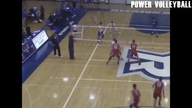 Watch Alfred HitchBLOCK GIF on Gfycat. Discover more funny, volleyball GIFs on Gfycat