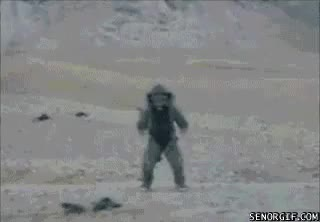 Watch and share Funny Gifs Cool Dont Look At Explosions GIFs on Gfycat
