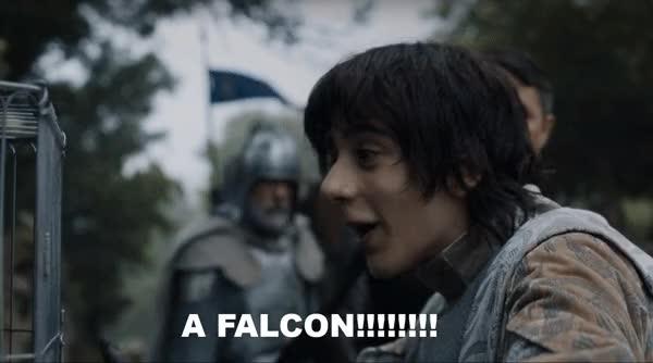 Watch falcon GIF on Gfycat. Discover more aidan gillen GIFs on Gfycat