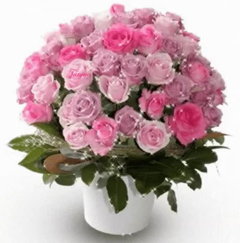 Watch and share Roses Bouquet GIFs on Gfycat