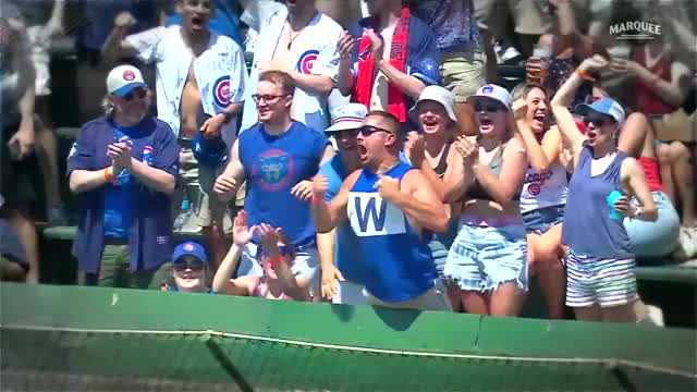 Watch and share Cubs Fan Is Ecstatic That He Caught Joc Pederson's Home Run. GIFs by handlit33 on Gfycat