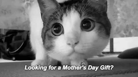 Watch this happy mothers day GIF by GIF Reactions (@visualecho) on Gfycat. Discover more HappyMothersDay, happy mothers day, happymothersday, mom, mommy, mothers day GIFs on Gfycat
