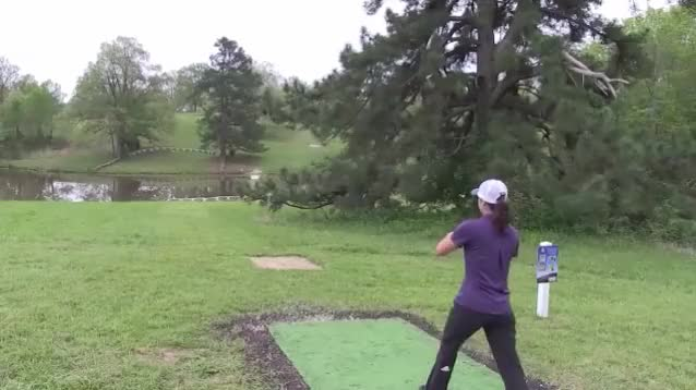 Watch 2017 Jonesboro Open - Weese almost ace - Round 2 Hole 6 GIF by Ultiworld Disc Golf (@ultiworlddg) on Gfycat. Discover more related GIFs on Gfycat
