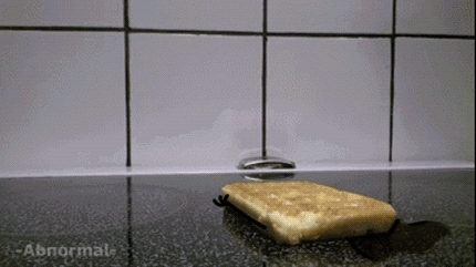reallifedoodles, Ready to start my day (reddit) GIFs