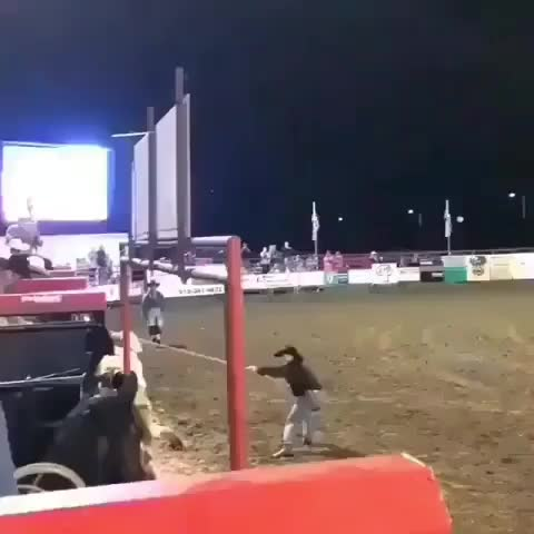 Watch and share Rodeo GIFs and Bull GIFs by Add a name on Gfycat