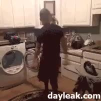 Watch Ropa sucia GIF on Gfycat. Discover more related GIFs on Gfycat