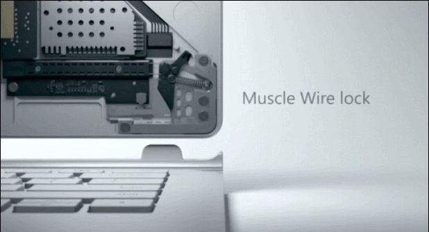 Muscle GIFs