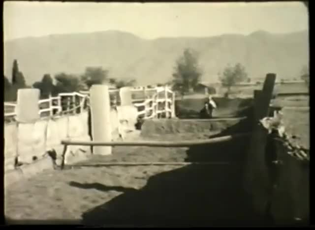 Watch and share 16th Light Cavalry GIFs and Riding School GIFs on Gfycat