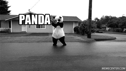 panda panda panda car GIFs