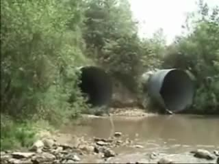 Watch HMB while I drive outta this pipe and through this here creek. (reddit) GIF by @forte3 on Gfycat. Discover more holdmybeer GIFs on Gfycat