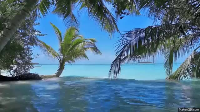 Watch and share Relaxing Beach - Pan Flute Music And  Nature GIFs on Gfycat