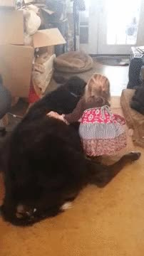 Watch and share Aww GIFs on Gfycat