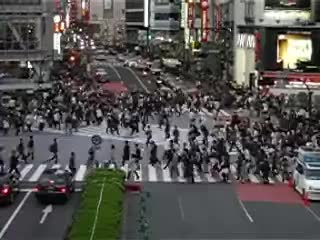 Watch japan crossing GIF on Gfycat. Discover more japan GIFs on Gfycat
