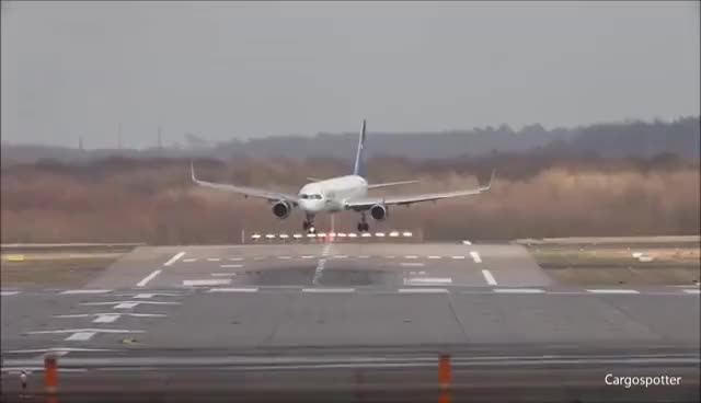 Watch and share Plane Landing GIFs on Gfycat