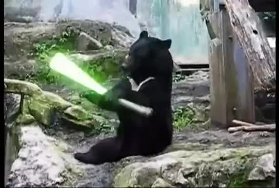 Watch and share Lightsaber GIFs and Black GIFs on Gfycat