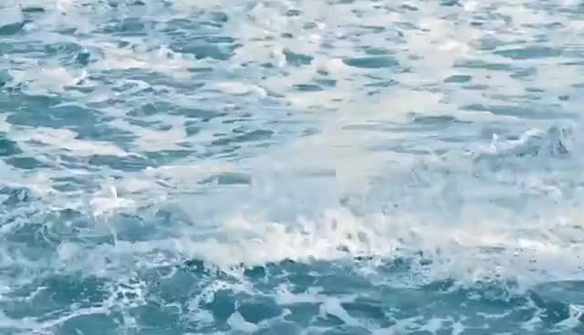 Watch this nature GIF on Gfycat. Discover more nature, ocean GIFs on Gfycat