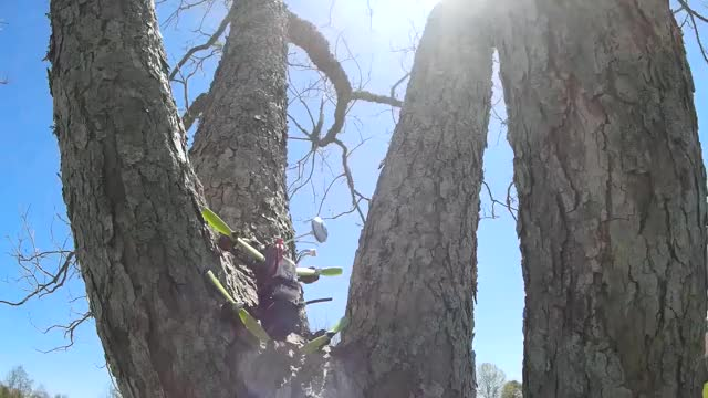 Watch and share Multicopter GIFs and Fpv GIFs by Daniel T on Gfycat