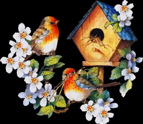 Watch and share Flowers: Transparent Flowers- Birds I. animated stickers on Gfycat
