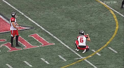 Watch and share Stampeders GIFs and Alouettes GIFs by Archley on Gfycat