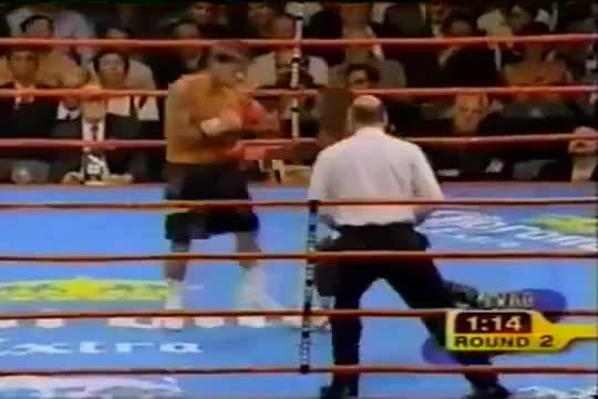 Watch countering the jab with the right hook vs ledwaba GIF by @walleggy on Gfycat. Discover more related GIFs on Gfycat