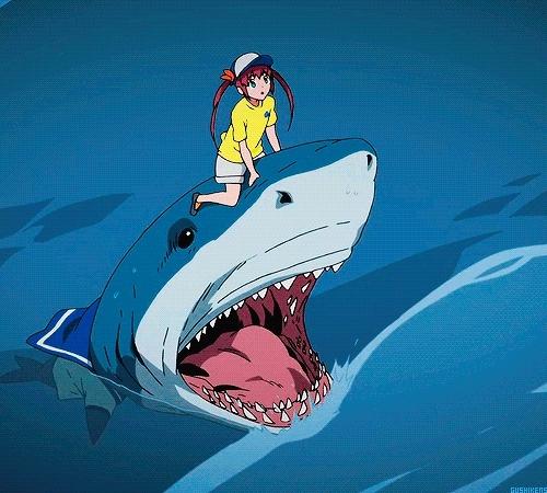 Shiina Chuujou, amagi, amagi brilliant park, anime, jaw, mine abp, myposts, shark, tsunderesharks GIFs