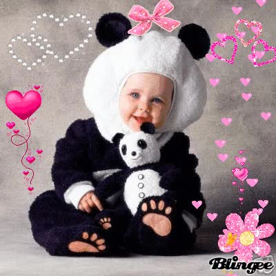 Watch bimbo panda GIF on Gfycat. Discover more related GIFs on Gfycat
